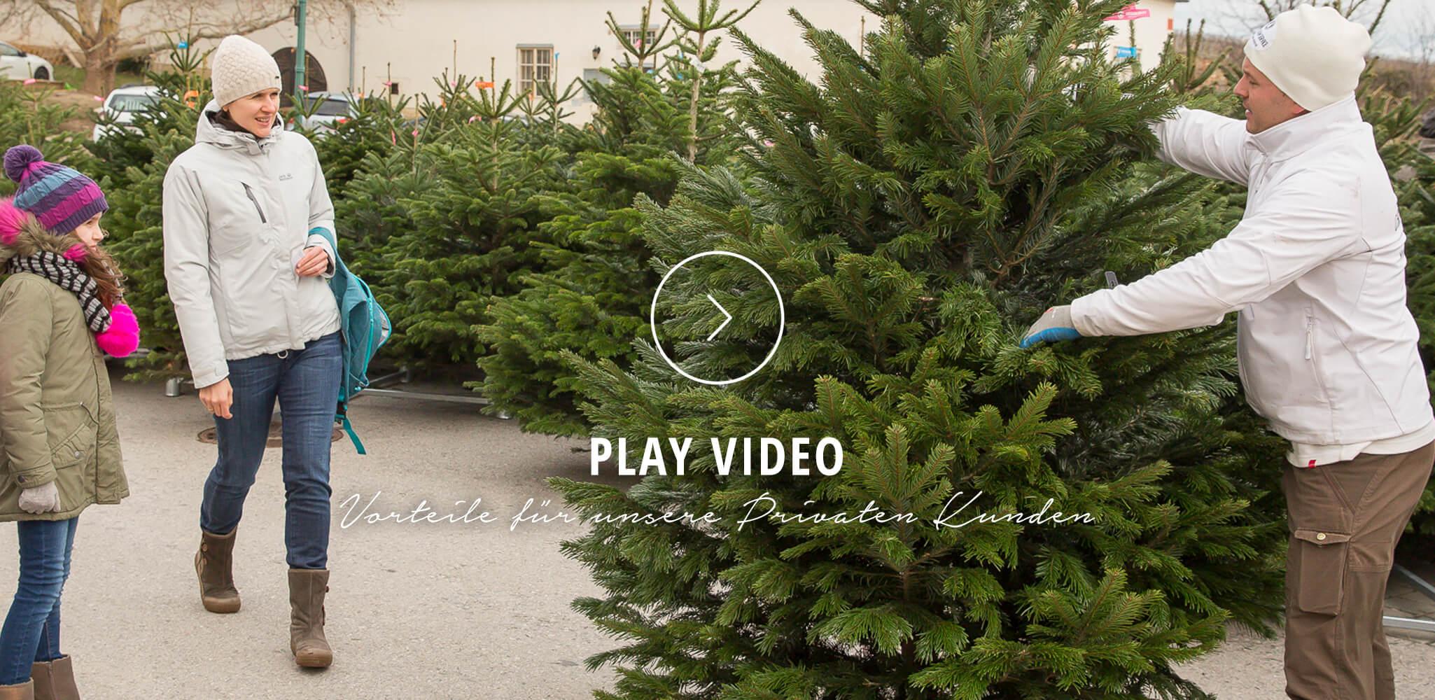 Video: Vorteile Private - Christbaum Service®
